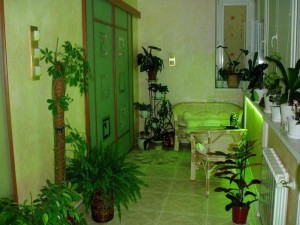 Живые цветы в зеленом интерьере