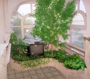 Зимний сад и особенности его обустройства